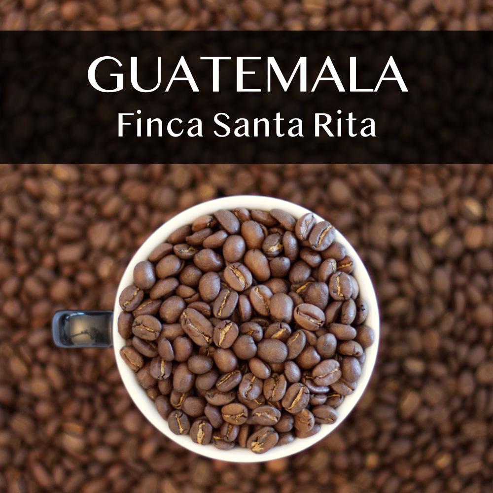 GUATEMALA | Finca Santa Rita