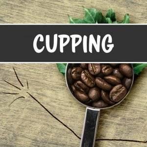 Kaffee Verkostug
